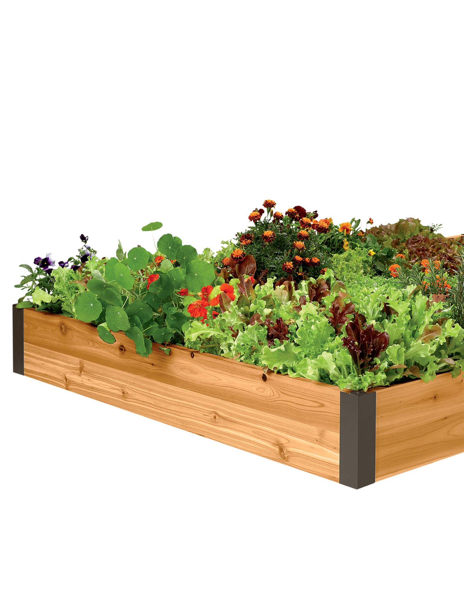 Raised Garden Bed 4' x 6' by Gardener's Supply Company