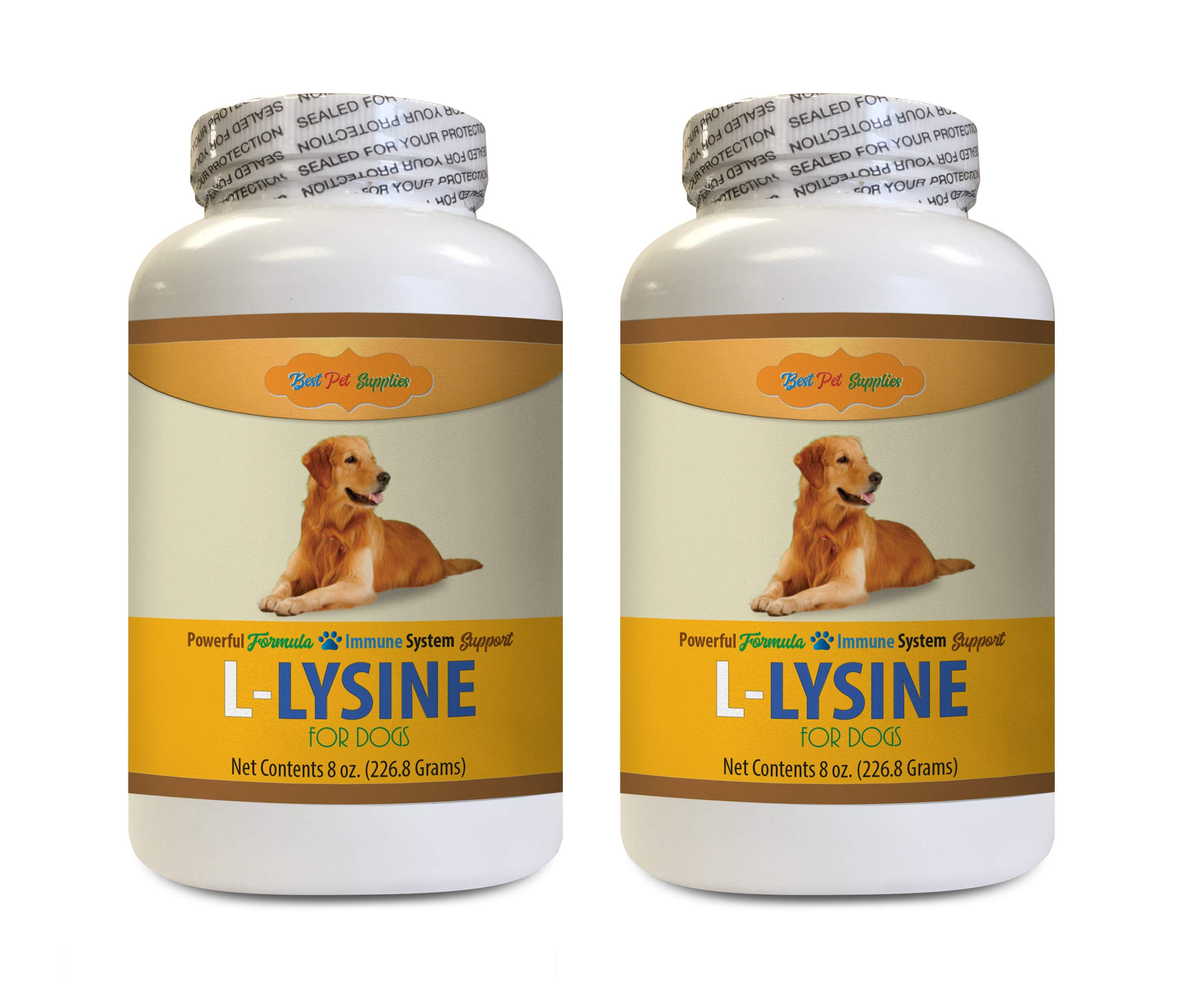 BEST PET SUPPLIES LLC Respiratory Support for Dogs - L LYSINE for Dogs Powder - Powerful Immune System Support - Mix with Food - Skin Eye and Bone Health - Dog Skin Soother - 2 Bottles (16 OZ) by BEST PET SUPPLIES LLC