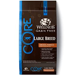 Wellness CORE Natural Dry Grain Free Large Breed Dog Food