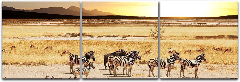 Bilderdepot24 Cuadros en Lienzo Sabana Africana - 90 x 30 cm 3 ...