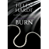 Burn (The Steel Brothers Saga Book 5)