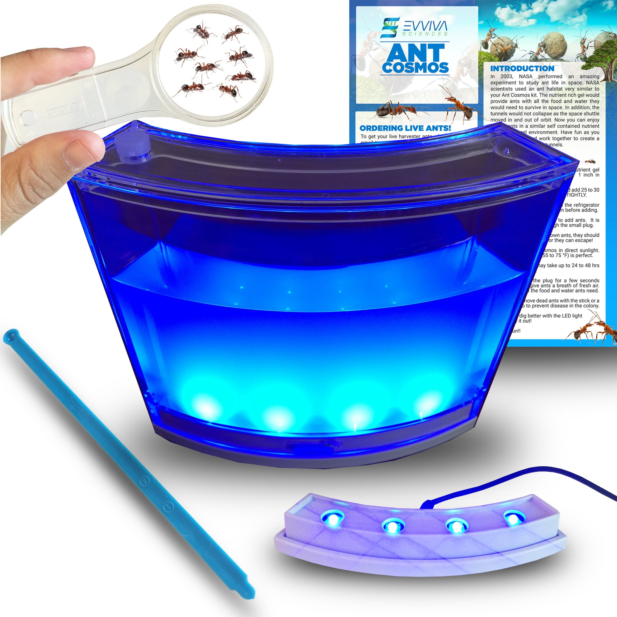 Amazing Ant Habitat W/ LED Light. Enjoy A Magnificent Habitat. Great for Kids & Adults. Evviva Ant Ecosystem W/ Enhanced Blue Gel. Educational & Learning Science Kit. Live Ants Not Included by Evviva Sciences