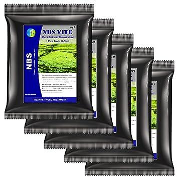 NBS Vite 5 Contenu du bassin décapant pour les algues ...