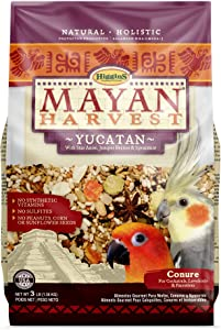 Higgins Mayan Harvest Yucatan Blend Bird Food for Small Hookbills, 3 lbs.