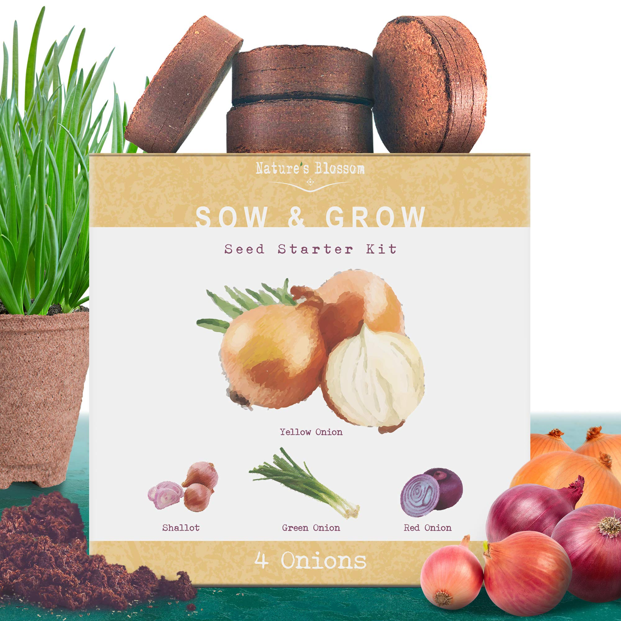 Nature's Blossom Onion Growing Kit. 4 Types of Onions to Grow from Seed: Red Onions, Green, Yellow and Shallot Onion Organic Seed. Complete Indoor Outdoor Beginners Gardening Set.