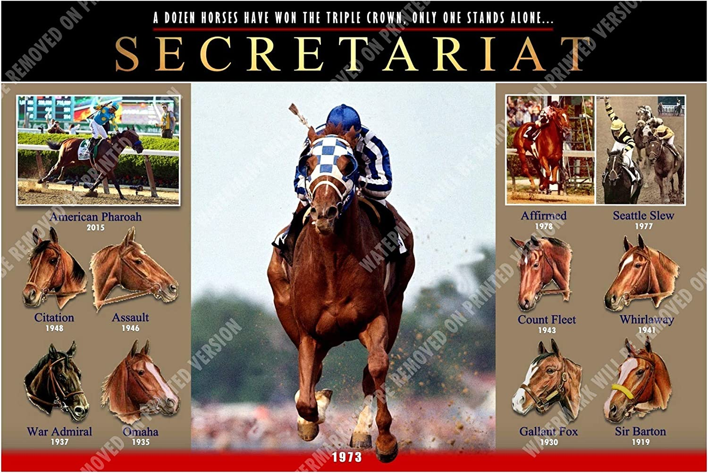 TRIPLE CROWN WINNERS 8X10 PHOTO HORSE RACING PICTURE JOCKEY 1st 11 WINNERS