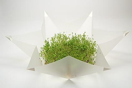Microgarden - Mini set-invernadero para el hogar