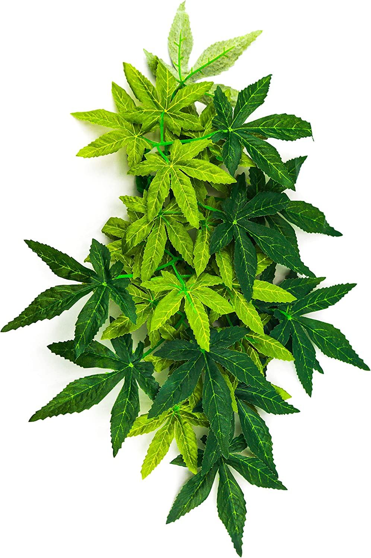 Aqua KT Green Terrarium Jungle Plant Vine with Suction Cup for Reptiles Amphibians, 12 Inch Length, Green