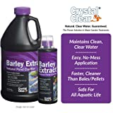 CrystalClear Barley Extract Concentrate - Natural