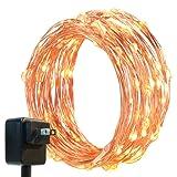 Amazon Price History for:DecorNova 120 LED String Lights, 39.4-Feet, Warm White