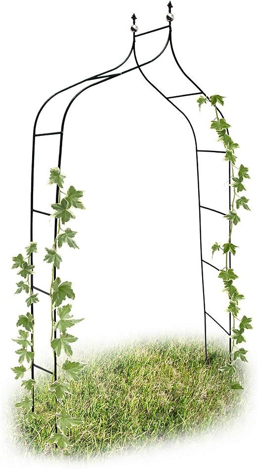 Relaxdays 10017904 - Arco para trepadoras, 1.70 x 2.4 m, Color Verde: Amazon.es: Jardín
