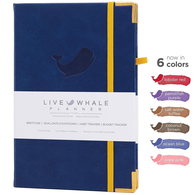 Amazon.com: Planificador de ballenas en vivo – Agenda ...