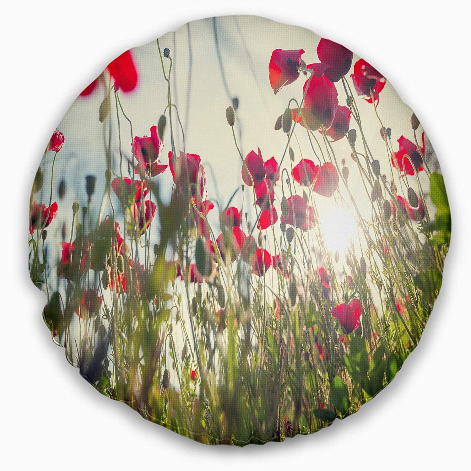 Designart CU12468-20-20-C Poppy Flowers on Summer Meadow' Floral Round Cushion Cover for Living Room, Sofa Throw Pillow 20'