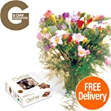 Fresh Flowers Delivered - 15 Mixed Freesias Bouquet with Chocolates, Flower Food and Bonus Ebook Guide - Delivery Included - Perfect for Birthdays, Anniversaries and Thank You Gifts - 8 Day Guarantee