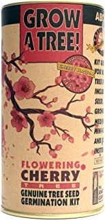 product image for Flowering Cherry | Parks Collection | Tree Seed Grow Kit | The Jonsteen Company