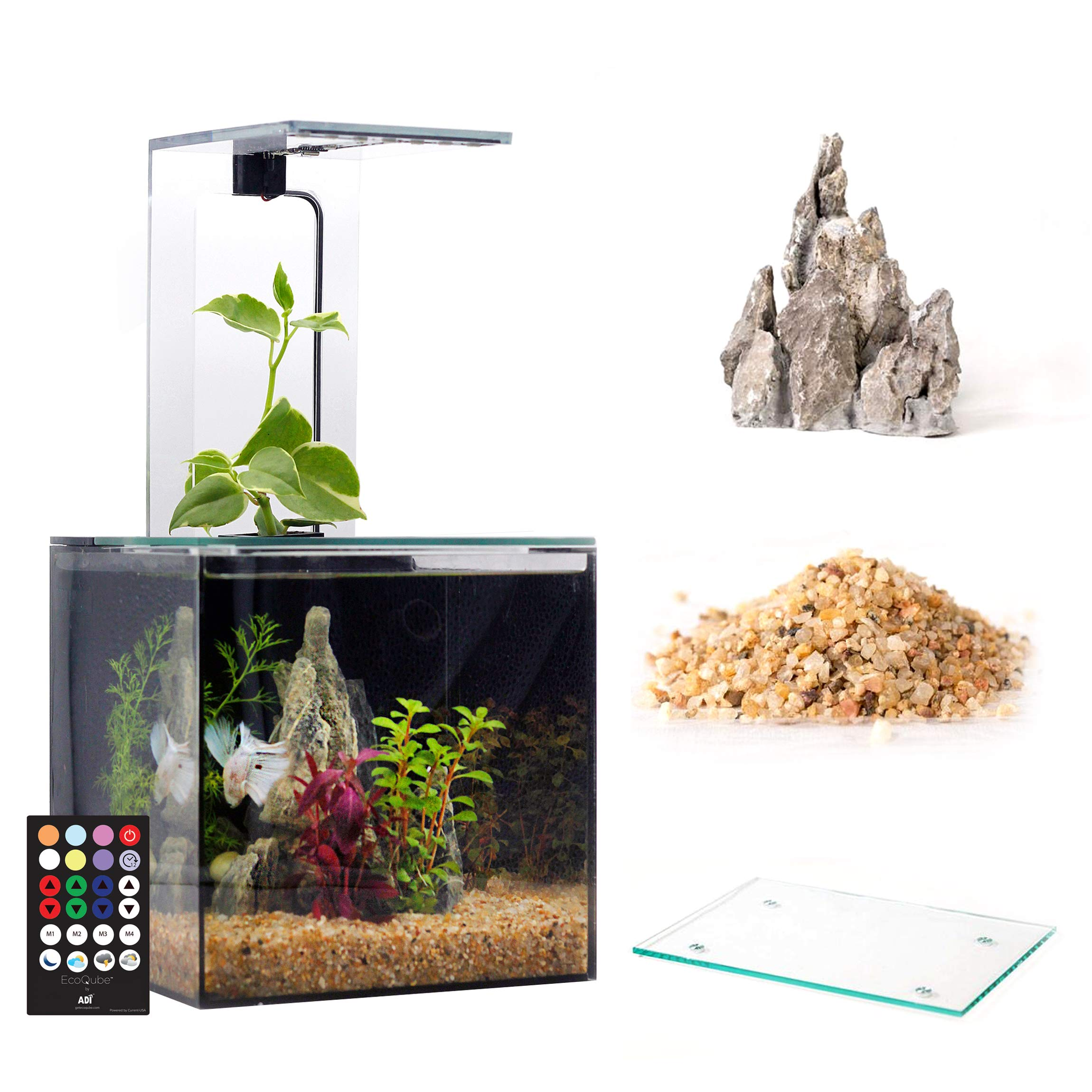 EcoQube Aquarium - Desktop Betta Fish Tank For Living Office And Home Décor by EcoQube