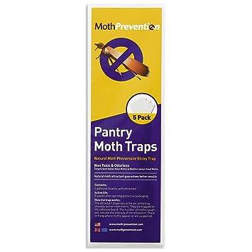 West Bay Pantry - Paquete de 5 moldes para prevenir la Polilla y Matar Las polillas, para Las polillas de Alimentos en el Mercado.