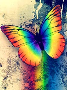 Ginfonr 5D DIY Mosaic Diamond Painting Kits Butterfly Rainbow Full Drill, Paint with Diamonds Art Animal Landscape Cross Stitch Embroidery Craft for Home Office Wall Decor 12x16 Inch