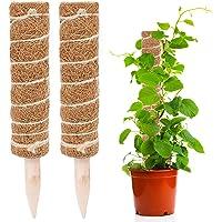 JLNGTHONG Postes de Coco, Tótem de Fibra de Coco para Extensión de Soporte de Plantas, Plantas de Interior Trepadoras…