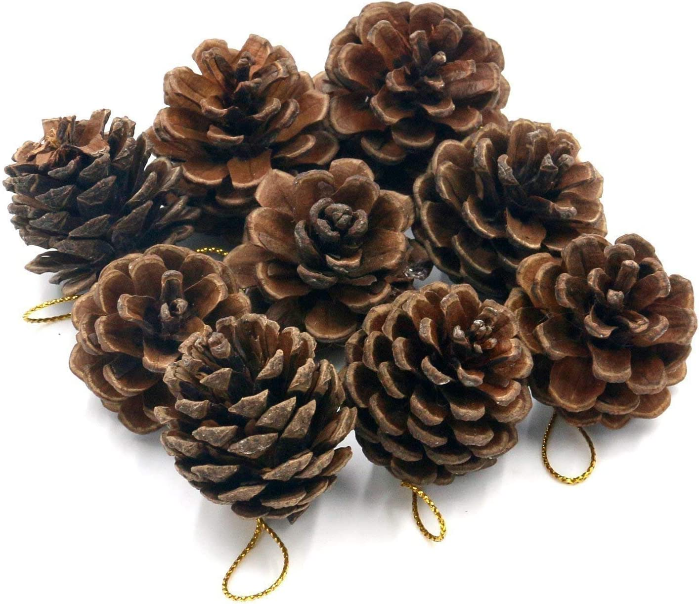 10Pcs Large Natural Dried Pine Cones Crafts For Home Hanging Decoration A