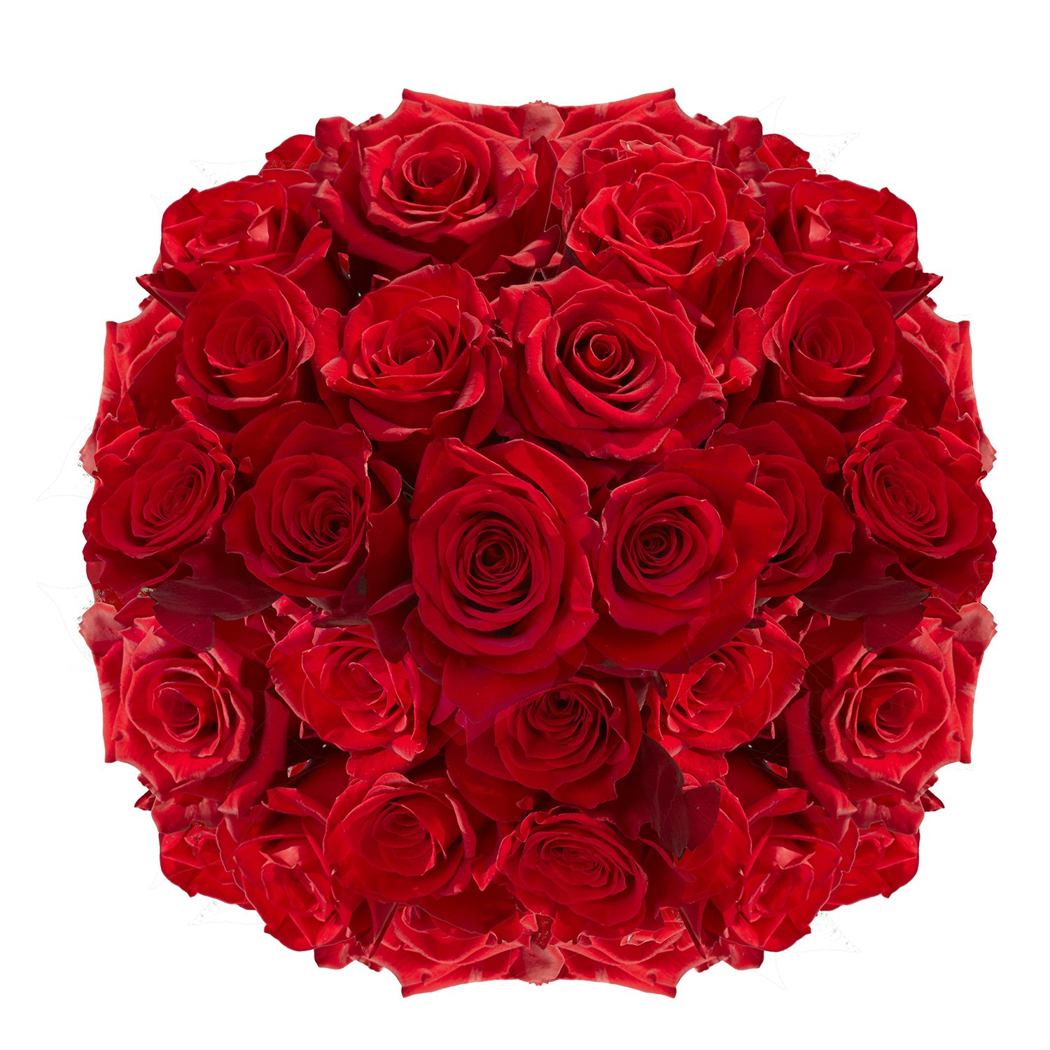 GlobalRose 100 Red Roses- Vibrant and Bright Red Blooms- Fresh Flowers Express Delivery) by GlobalRose (Image #3)