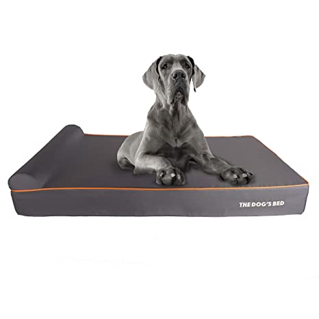 The Dogs Balls Cama de Perro ortopédica, Impermeable, 5 tamaños/7 Colores: