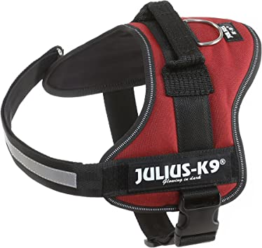 K9 Powerharness, Tamaño: 0, Colore: Burdeos/marrón: Amazon.es ...