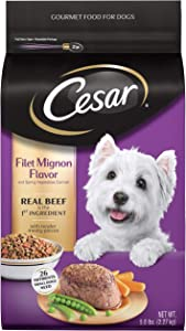 CESAR Filet Mignon Flavor With Spring Vegetables Dry Small Breed Dog Food 5 Pounds
