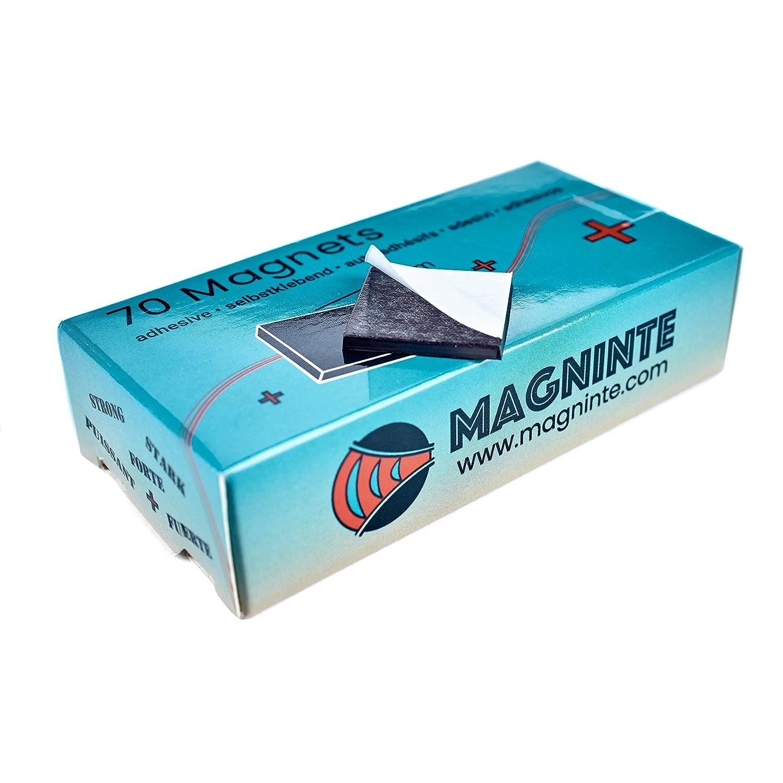 /Ø 12 x 16 mm Piccoli Metallo Potenti Coni Magneti intervisio Neodimio Magnet 72 Picollo Puntine Magnetiche in Acciaio Inox per Mappe Bacheca Lavagna Pannelli Magnetici a Frigoriferi