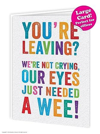 Funny Humorous Leaving Eyes Wee Large Card 19 x 27.5cm