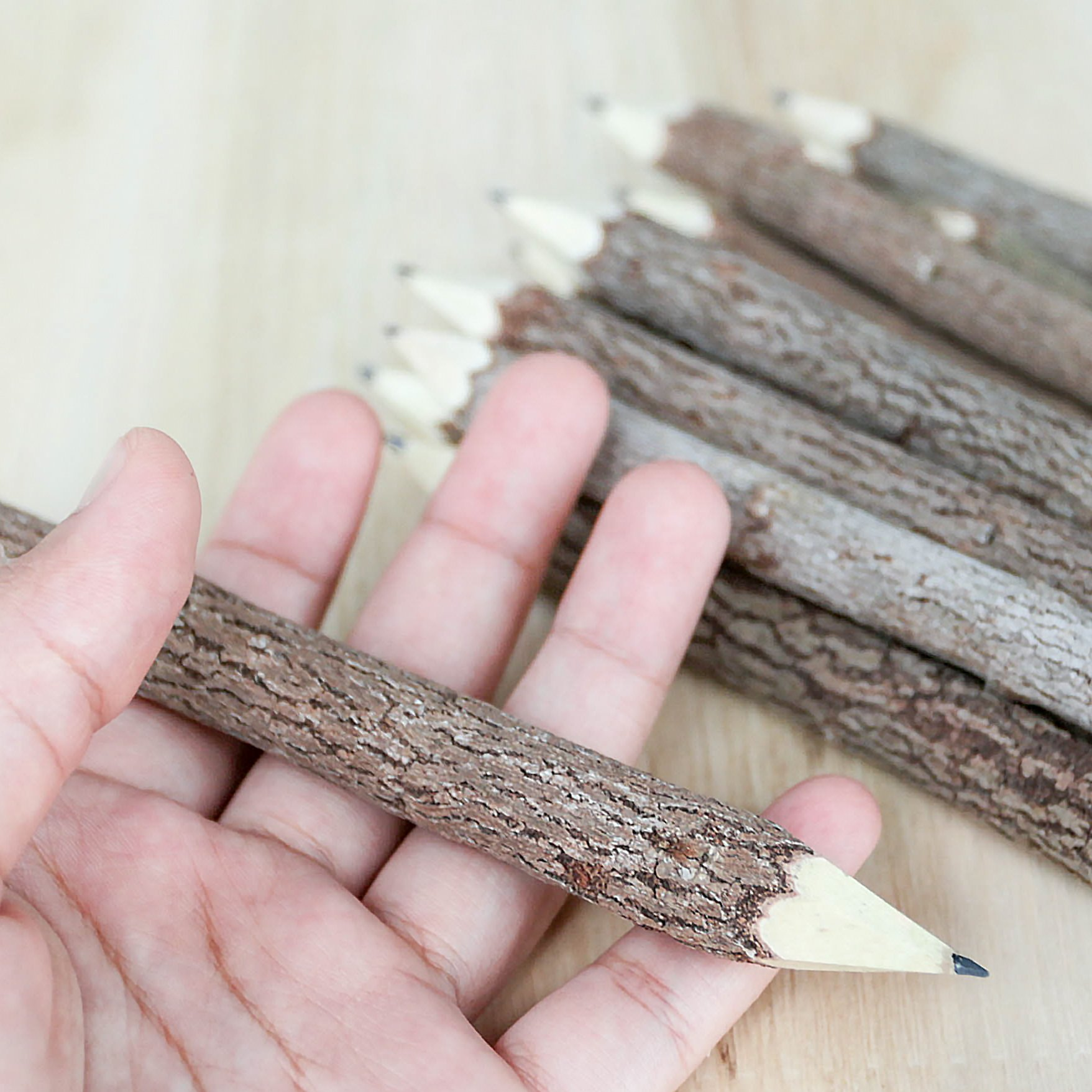 BSIRI Graphite Wooden Tree Rustic Twig Pencils Unique Birch of 12 Camping Lumberjack Party Novelty Gift by BSIRI (Image #6)