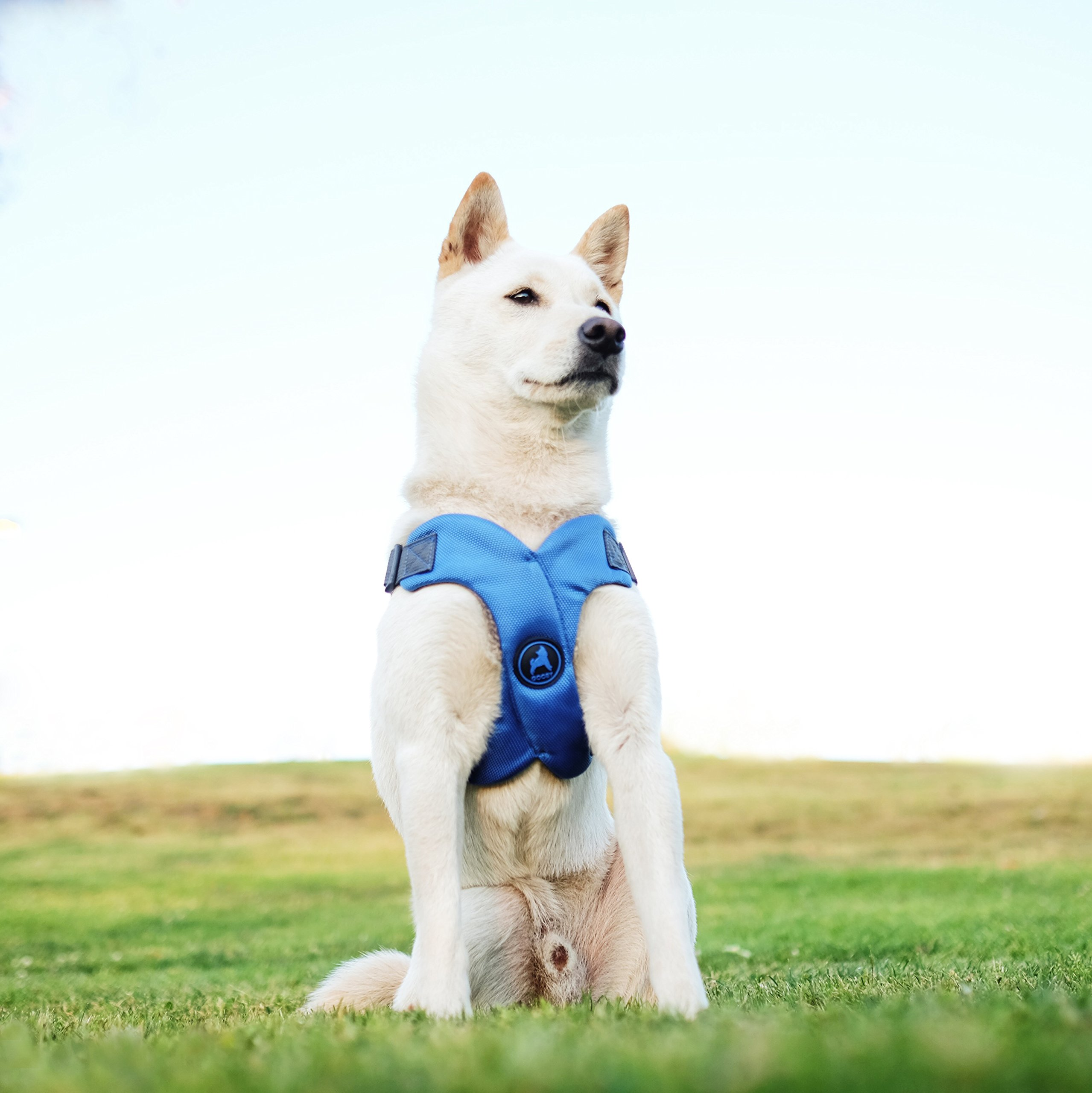 [Old Version] Gooby Escape Free Memory Foam Harness for Small Dogs, Pink, Large by Gooby (Image #6)