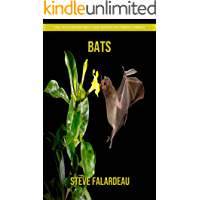 Bats - Cool Facts for Kids About These Amazing and Powerful Animals