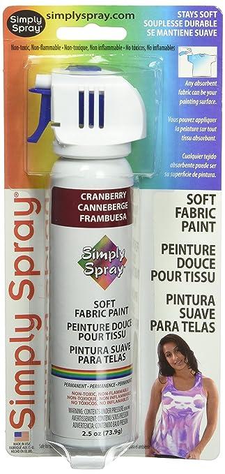 Amazon Com Deval Simply Spray 2 1 2 Ounce Soft Fabric Paint Cranberry