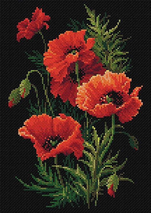 Amazon Com Riolis Poppies Diamond Art Kit Posters Prints