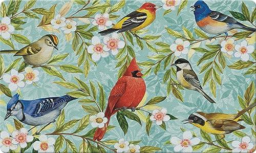 Toland Home Garden 830046 Bird Collage 18 x 30 Recycled Mat, USA Produced