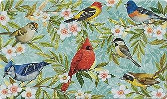 Toland Home Garden Bird Collage 18 x 30 Inch Decorative Floor Mat Colorful Spring Flower Cardinal Jay Doormat