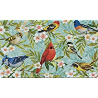 Toland Home Garden Bird Collage 18 x 30 Inch Decorative Floor Mat Colorful Spring...