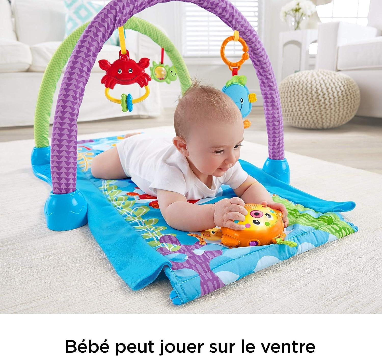 d/ès la naissance DRD92 tunnel /à traverser Fisher-Price Tapis musical d/éveil et dactivit/és 2-en-1 Hippocampe pour b/éb/é jouets animaux marins suspendus