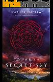 Toward a Secret Sky (Blink)