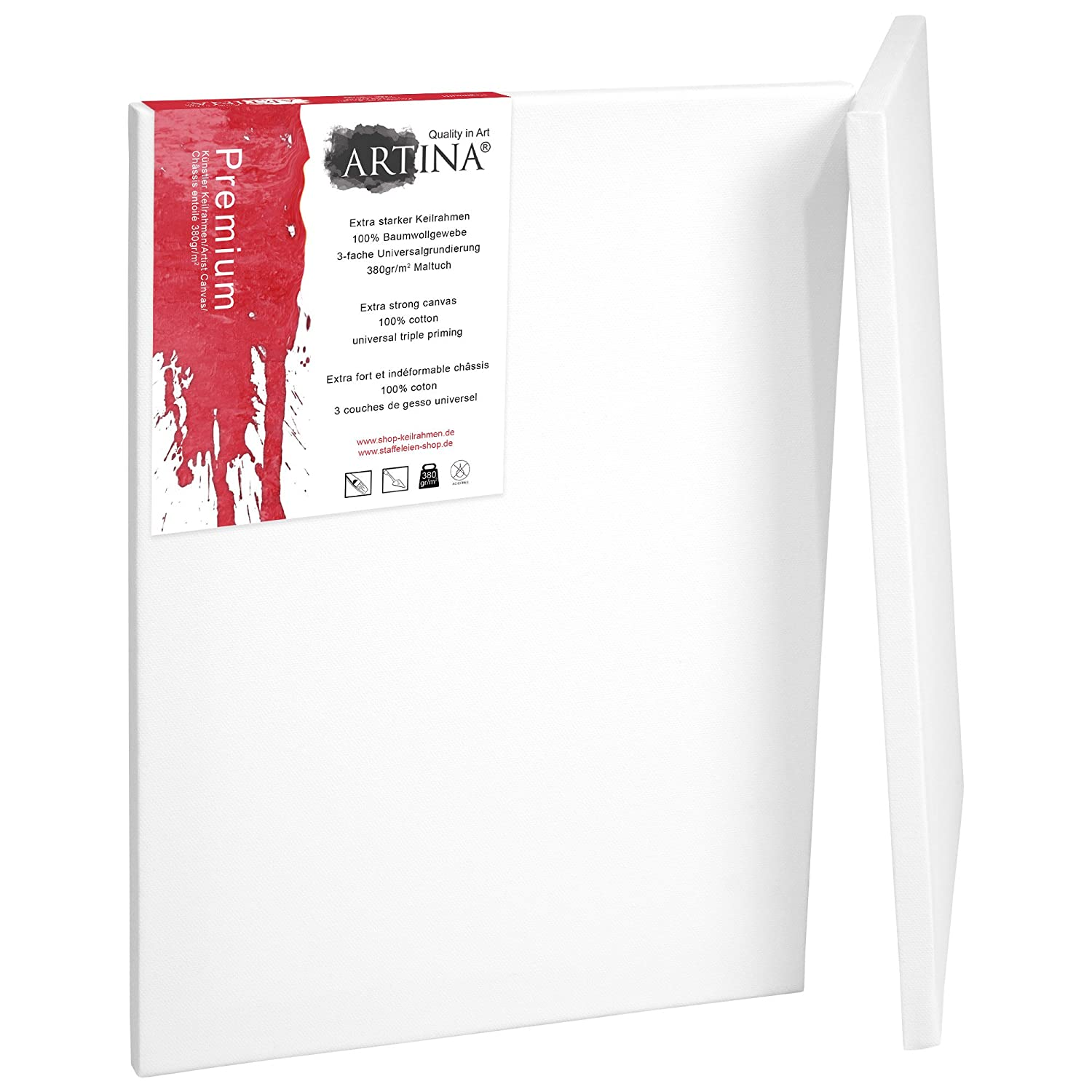 Artina 10 Blank Art Canvases 10 x 10 cm Premium Quality Artist Canvas Bulk Stretched & Triple Primed 4 x 4 Inch