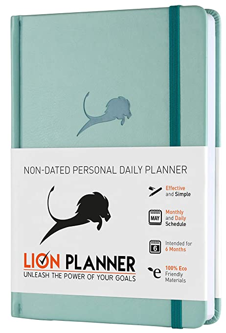 Amazon.com: Agenda diaria A5., Turquoise: Office Products