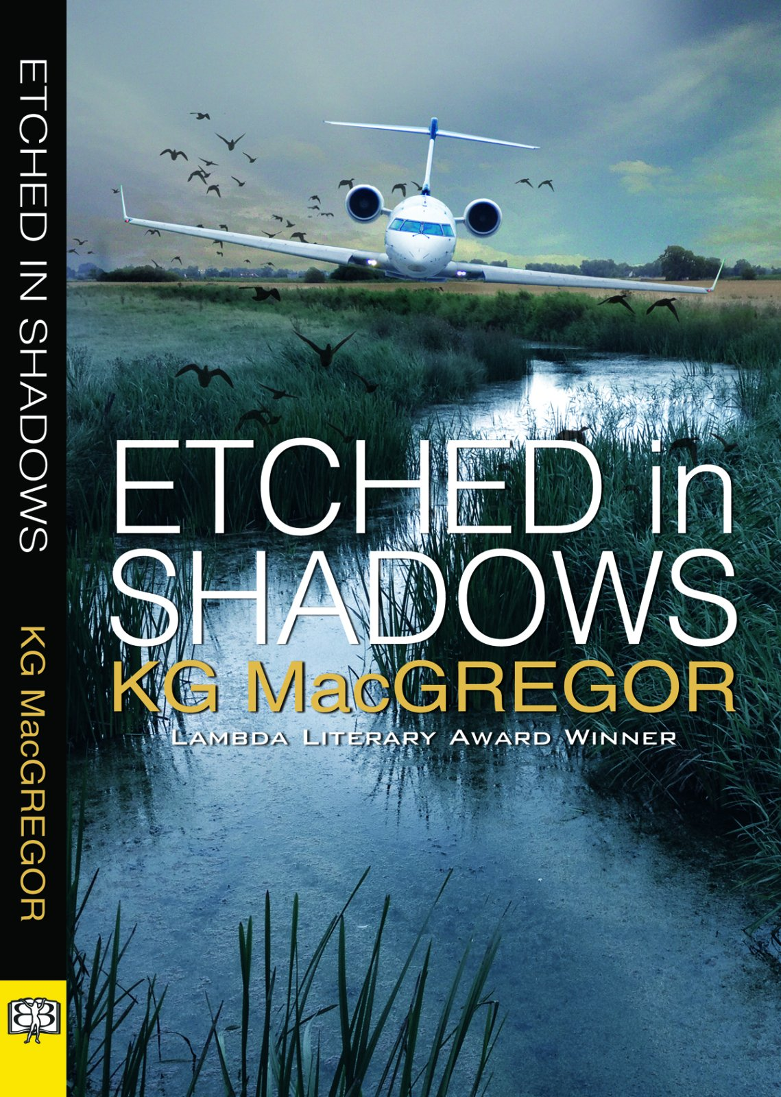 Download Etched in Shadows pdf
