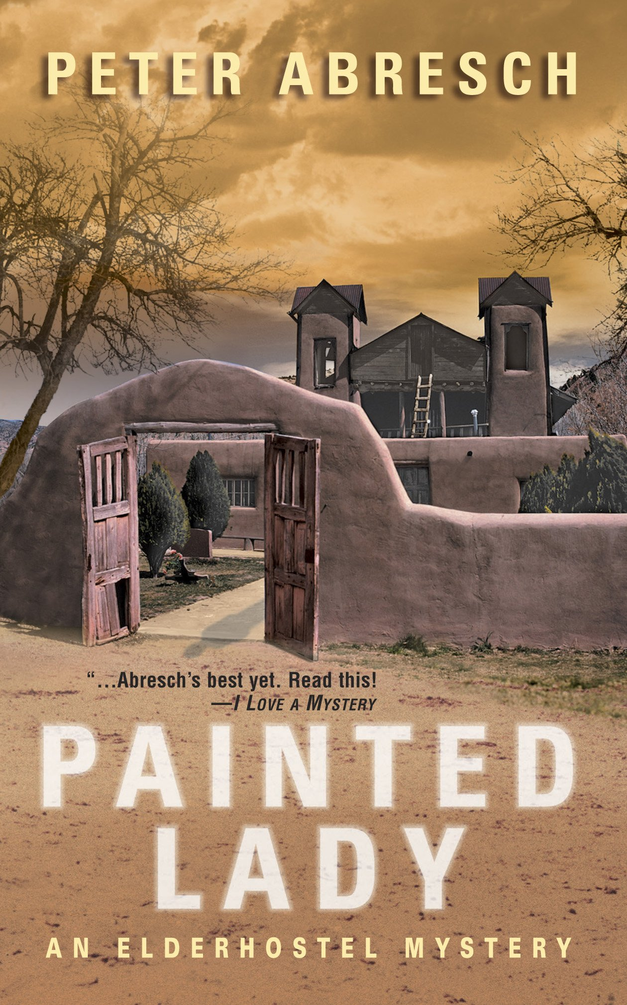 Download Painted Lady (Wwl Mystery, 488) pdf