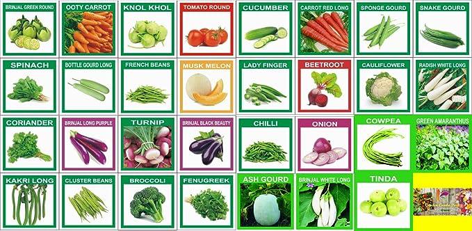 KRIWIN (Organic/Hybrid) Fruits & Vegetables Seed 31 Varieties 930+ seeds