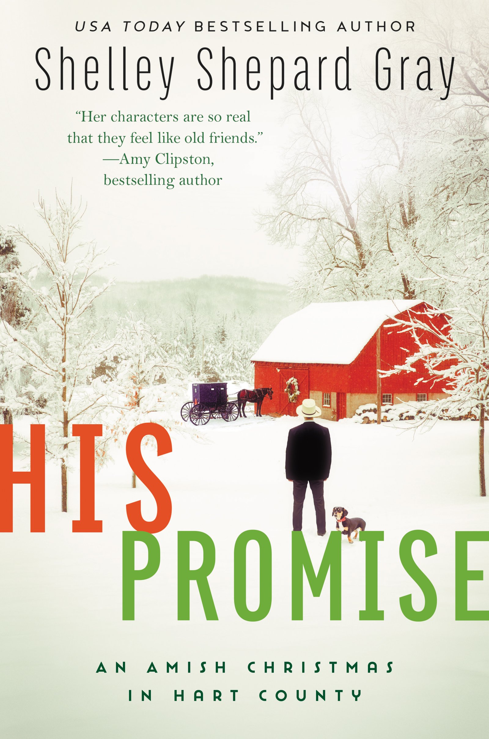 His Promise: An Amish Christmas in Hart County (Amish of Hart County ...