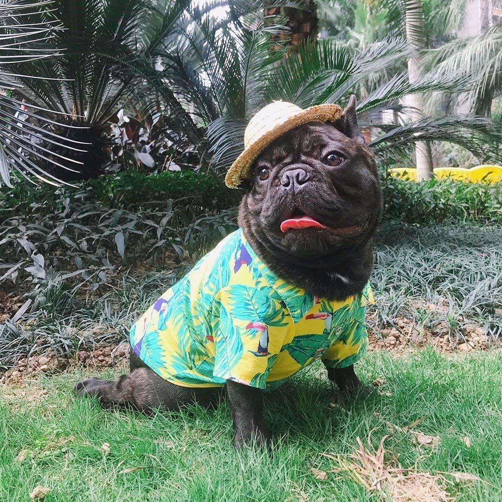 S, Yellow Summer Hawaiian Styles Shirts Puppy Clothes LUCKSTAR Pet T-Shirt//Dog Clothing Hawaiian Breeze Dog Apparel Sundress T Shirt Pet Clothing Colorful Beachwear Dog Shirts