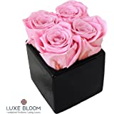 Luxe Bloom Urban Chic 4 Rose Black Cube - Red