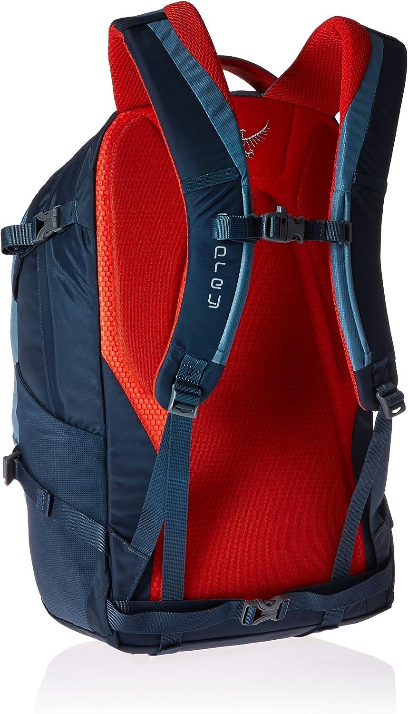 Osprey Packs Quasar Daypack Armor Grey