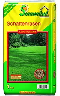 10 Stück Bodendecker Vinca Minor Alba Weißes Immergrün: Amazon.de ... Bodendecker Vinca Minor Garten